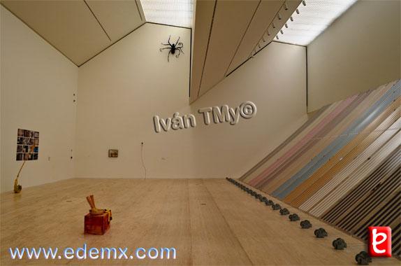 Museo Jumex, ID1875, Ivan TMy, 2014